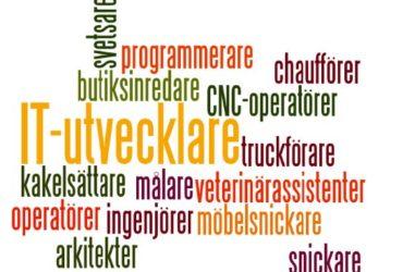 Vi bjuder in till en intervjudag med arbetskraft från Holland